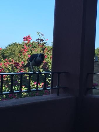 Reserva Conchal Beach Resort, Golf & Spa: photo0.jpg