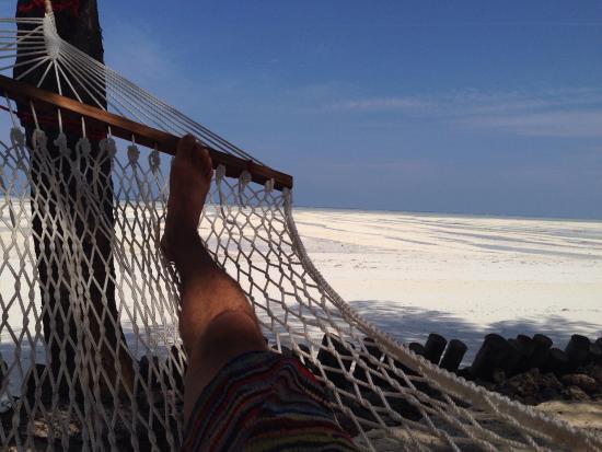 Ndame Beach Lodge Zanzibar: photo1.jpg