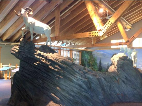 Denali Visitor Center: Inside the visitor center