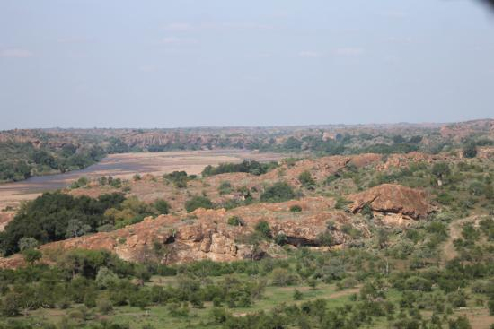 Provincia de Limpopo, Sudáfrica: Impala