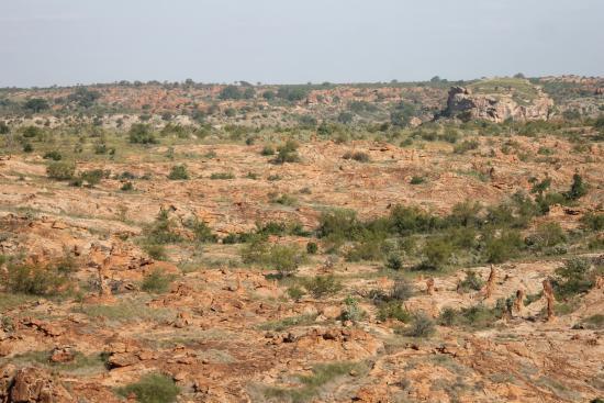 Limpopo Province, Νότια Αφρική: Delta