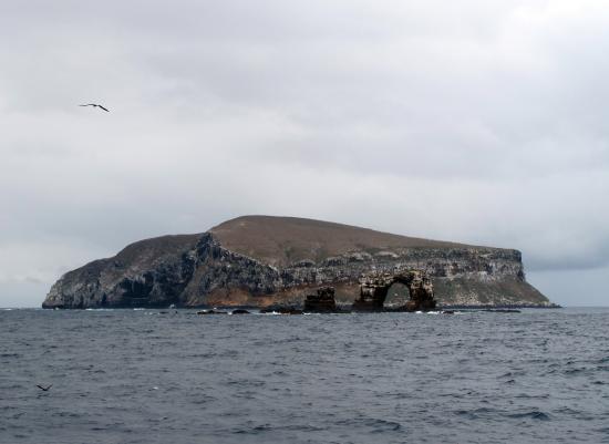 Darwin island and wallace island