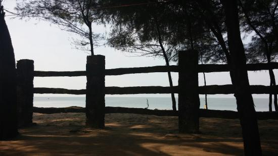 Landscape - Picture of Sitaram Beach Retreat, Thrissur - Tripadvisor