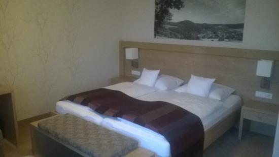 Best Western Plus Hotel Willingen: Kamer