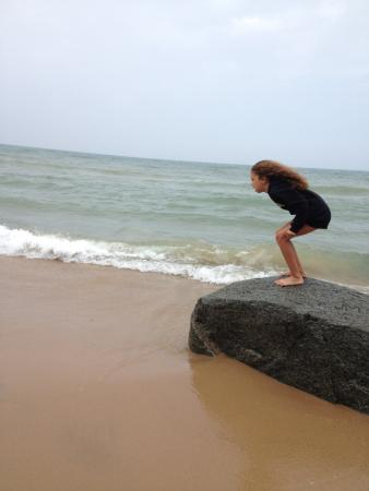 Sherwood Forest Bed and Breakfast and Cottage: Giant Boulder on the Beach