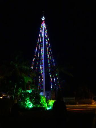 Cudjoe Key, Φλόριντα: The Christmas Tree.