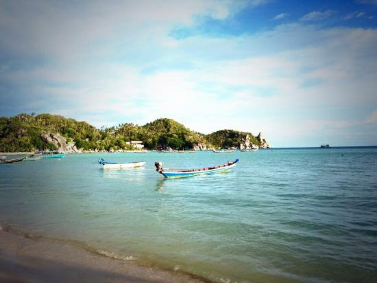 Picture of ko tao diving tour buddha view dive resort koh tao tripadvisor - Ko tao dive resort ...