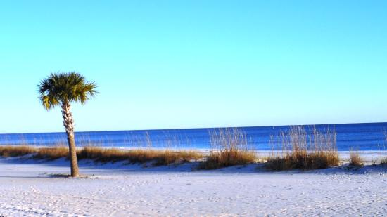 The 10 Closest Hotels To Biloxi Beach Tripadvisor Find Hotels