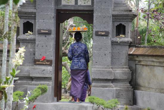 Alam Shanti: garden