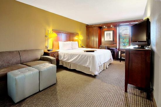 Hampton Inn Traverse City: King Study