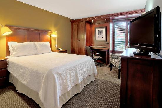 Hampton Inn Traverse City: Standard Queen
