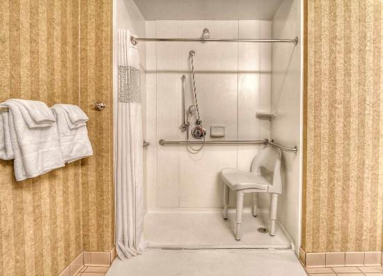 Petoskey, MI: Roll-in Shower
