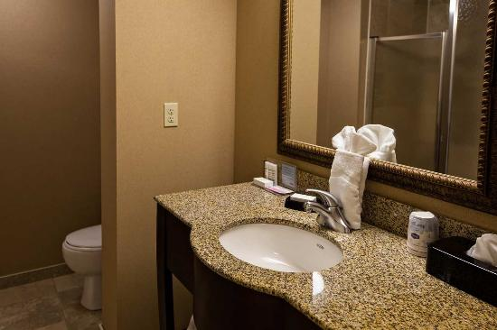 Napanee, Kanada: Clean hotel bathroom
