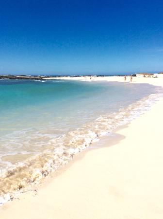 Spiaggia - Picture of El Cotillo Beach & Lagoons, El Cotillo - TripAdvisor