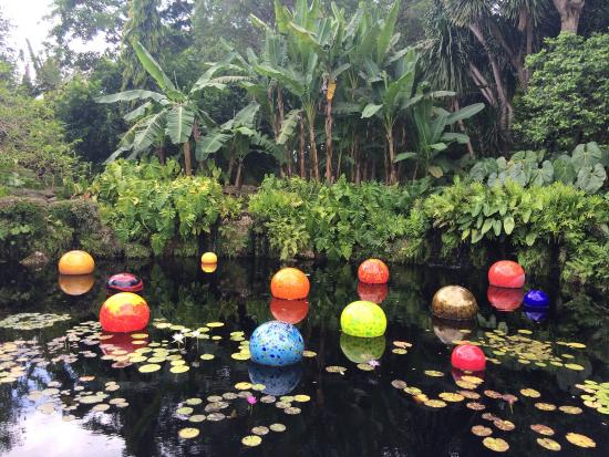 Incorporated sculptures by dale chihuly waterfall picture of fairchild tropical botanic for Fairchild tropical botanic garden