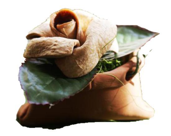 Bergarte Laboratorio Artigianale  souvenir tipico in buccia di bergamotto 2454510ebb6