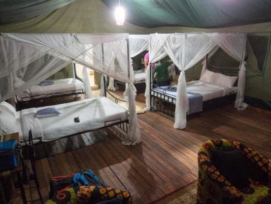Ngorongoro Wildcamp: Im Zelt.