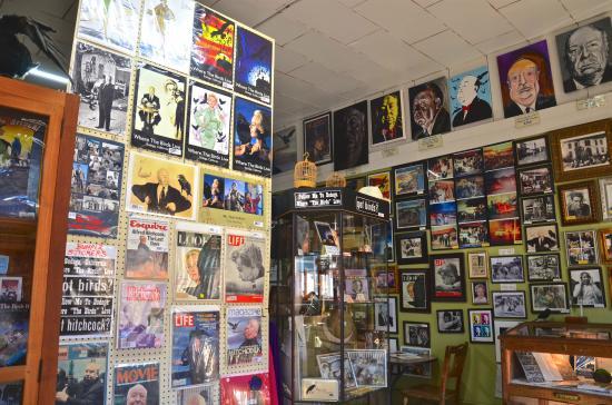 Inside Bodega Country Store (BCS)
