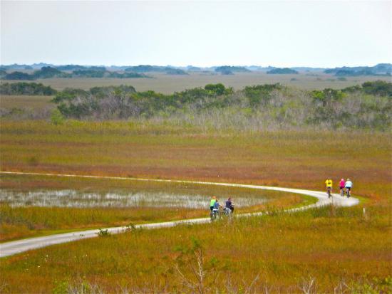 Shelburne, VT: Everglade Bike touring