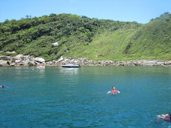 Arvoredo Island