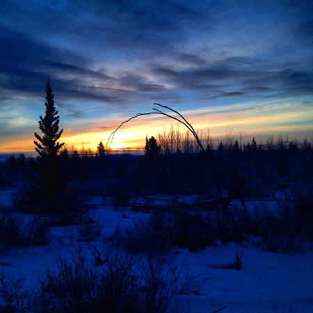 Takhini River Lodge: Sunrise while snowshoeing the trails