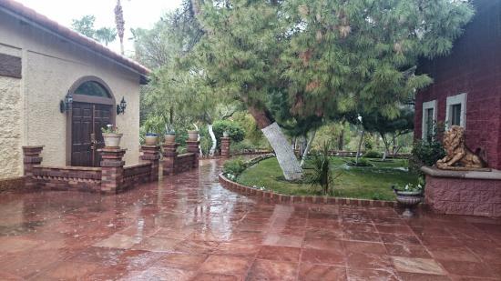 Florence, AZ: Jardins