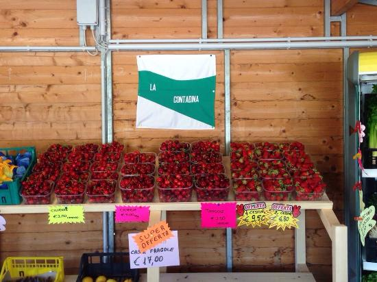 La contadina di Romagna