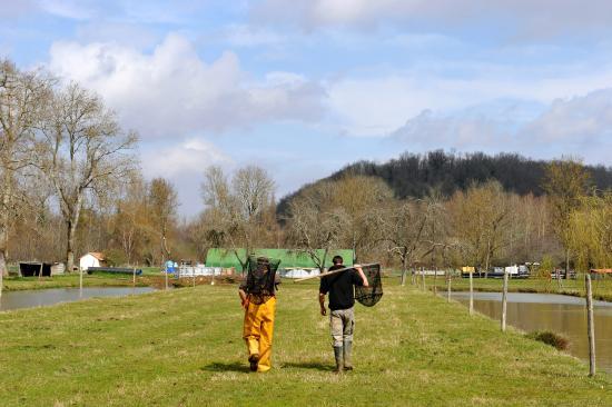 Neuvic, Frankrike: Pisciculteurs sur le domaine