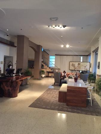 photo3 jpg picture of the stiles hotel south beach miami beach rh tripadvisor co za