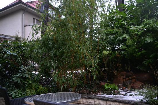City-Apartments am Park: Our terrace