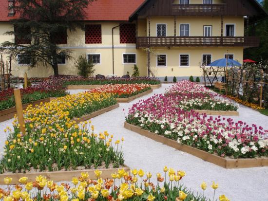 Radomlje, Slovenya: Exibition