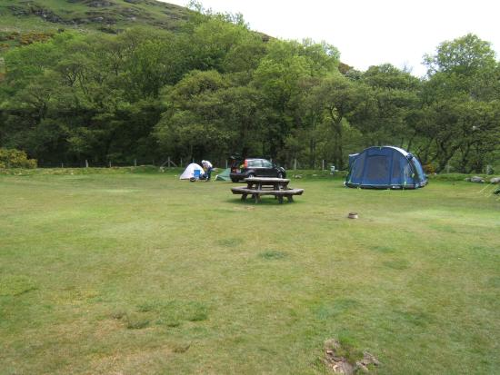 Lochranza, UK: Camp site.