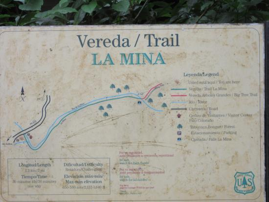 Map of the La Mina trail - Picture of The El Yunque Rain Forest ...