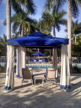 Provident Doral at The Blue Miami: Pool bed....ahhhhhhh