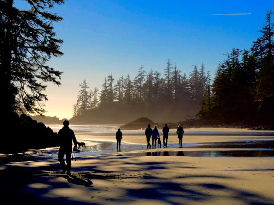 Hotels Near Tofino