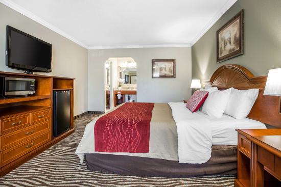 Laguna Hills, Californien: King Room