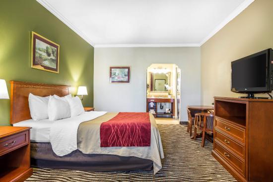 Laguna Hills, Californien: Single Queen Room