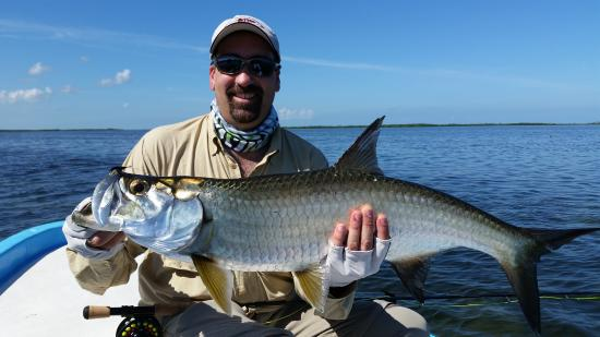 Cancun Fly Fishing Light Tackle and Fly Fishing Charters. : 2015 Nice size Tarpon on Fly in the afternoon light
