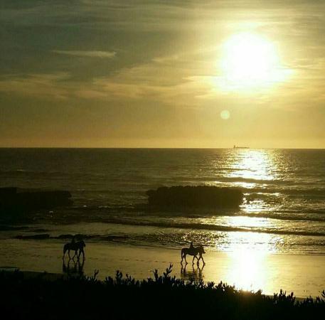 Taghazout Beach : avatar_1451559104166_large.jpg