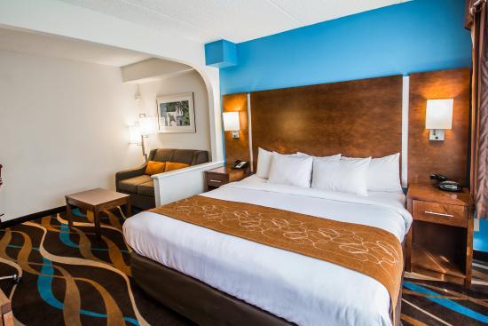 Fort Lauderdale Airport / Cruise Port Inn : FLNK