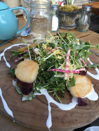Beet salad - Picture of Terrain Garden Cafe, Glen Mills - TripAdvisor