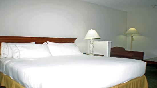 Holiday Inn Express & Suites Ex I-71/ Oh. State Fair/Expo Center: Guest Room