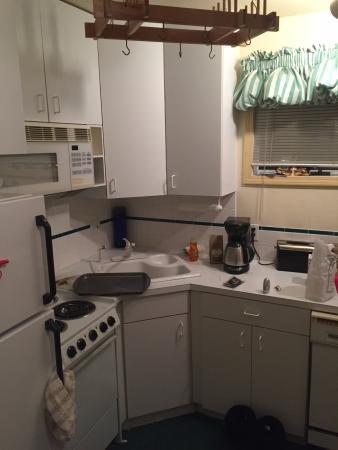 Viking Lodge: kitchenette
