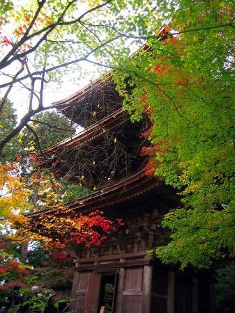 Kora-cho, Japonia: 西明寺