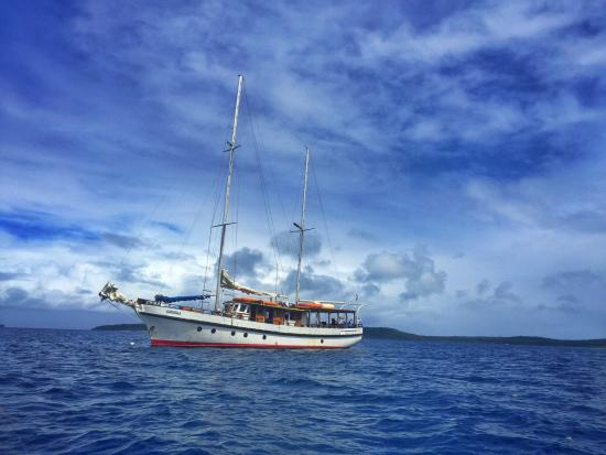 South Pacific Cruises - Coongoola Day Cruise: Coongoola
