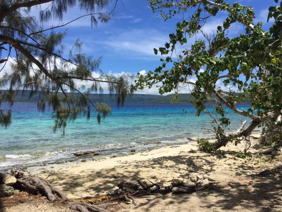 South Pacific Cruises - Coongoola Day Cruise: The protected bay