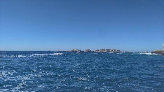 Vallarta Adventures 사진