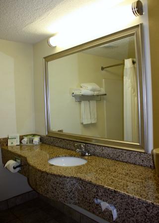 Hillsborough, NC: SPACIOUS BATHROOM IN ALL ROOMS