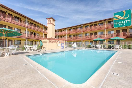 Quality Inn San Bernardino: Pool