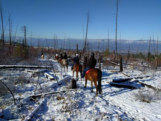 Kelowna Stables at Myra Canyon Ranch: Winter ride